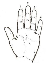 dits ukelele